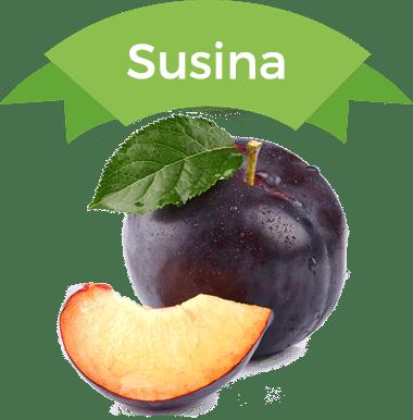 susina-piemonte-quaranta-frutta